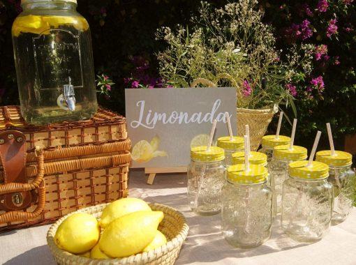 ideas para rincon de limonada